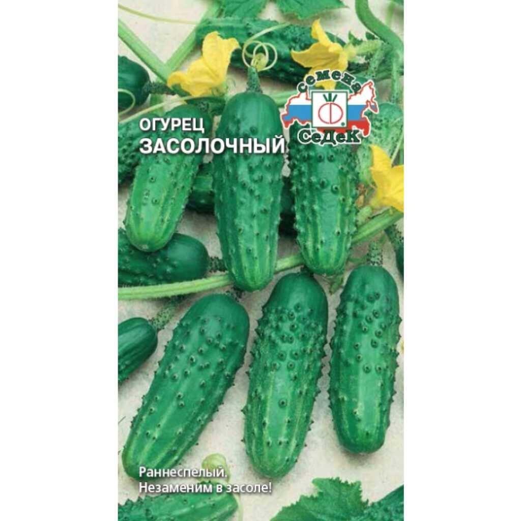 Trip бот телеграм Салават Эйфоретик Купить Томск